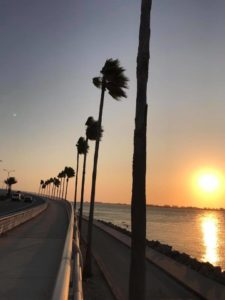 pest control bradenton showing sunset over the ringling bridge